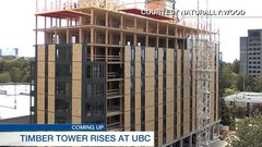 How the world's tallest wood building was constructed
