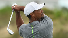 Weeks: Tiger still has excitement