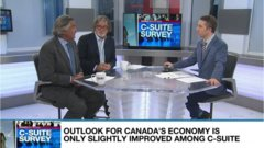 C-Suite survey finds Canada's top executives optimistic about growth, but worry about Stephen Poloz