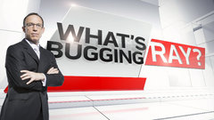 What's Bugging Ray?