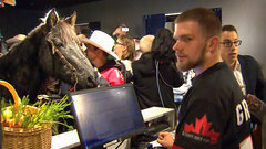 Tuffy the horse continues annual Stamps Grey Cup tradition
