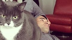 Kadri's cat creates buzz on social media, Leafs room