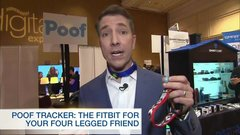 Poof collar like a FitBit for your furry friends