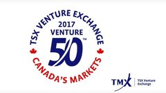 A who's who of top performers on TSX Venture Exchange