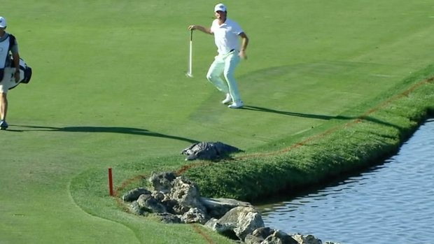 TaylorMade Golf Must See: Kaufman spooked by gator