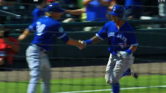 MLB: Blue Jays (ss) 3, Tigers 4