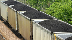 Policies won't boost coal industry: Analyst