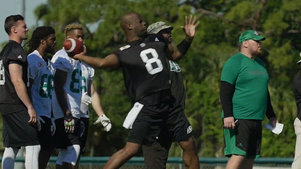 Vince Young highlights first day of CFL minicamps