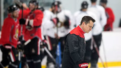 With their backs against the wall, Sens in search of answers
