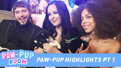 Paw-Pup Room Highlight Reel Featuring Camila Cabello, KJ Apa, Lilly Singh + More!