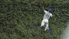 Must See: Pillar crashes into ivy-covered brick wall at Wrigley to make spectacular catch