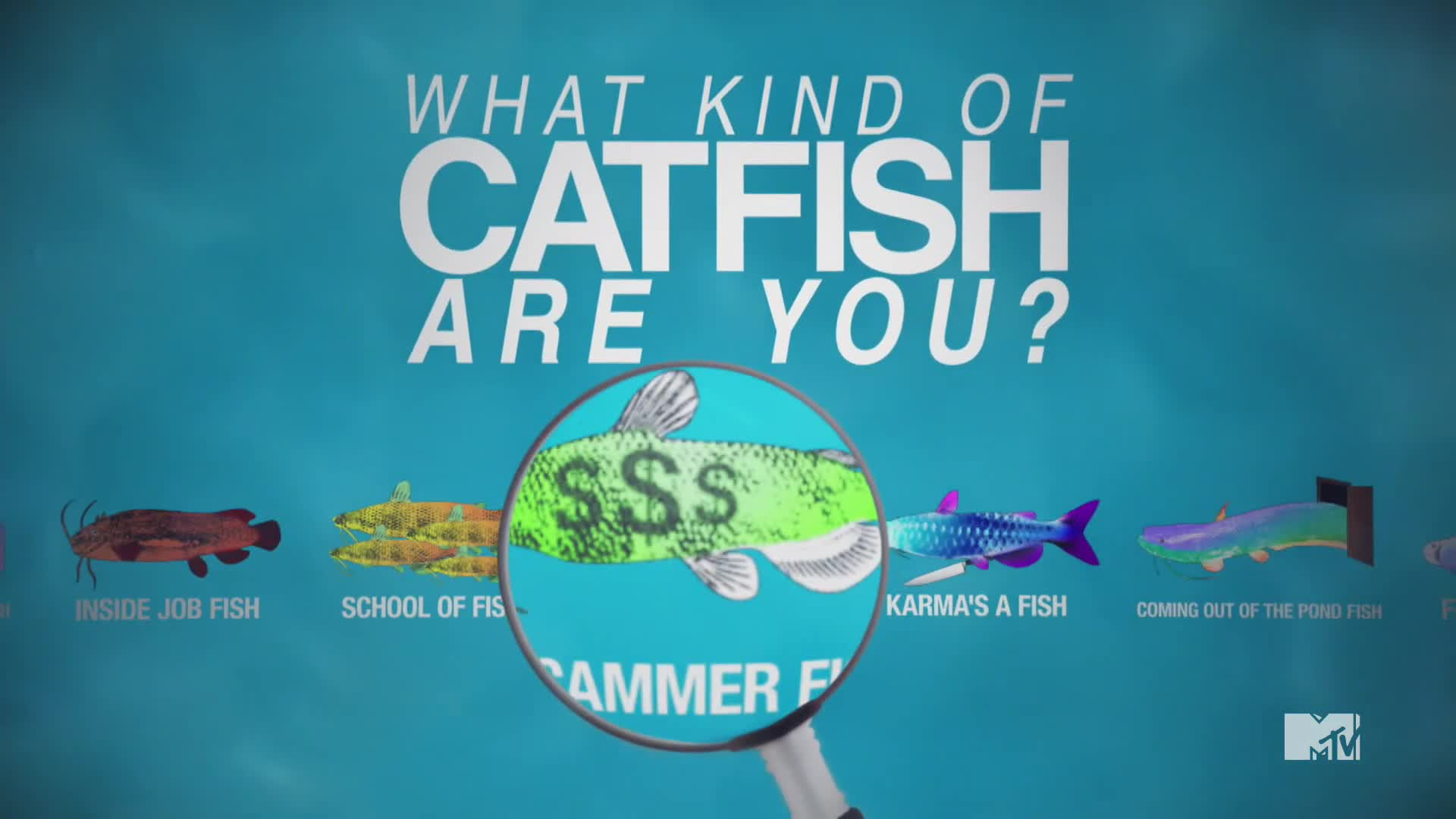 Catfish the tv show on for Cat fish mtv