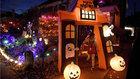 Pattie Lovett-Reid breaks down the business of Halloween