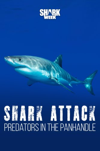 Shark Attack: Predators in the Panhandle