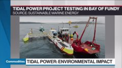Power Shift: Harnessing tidal power in the Bay of Fundy