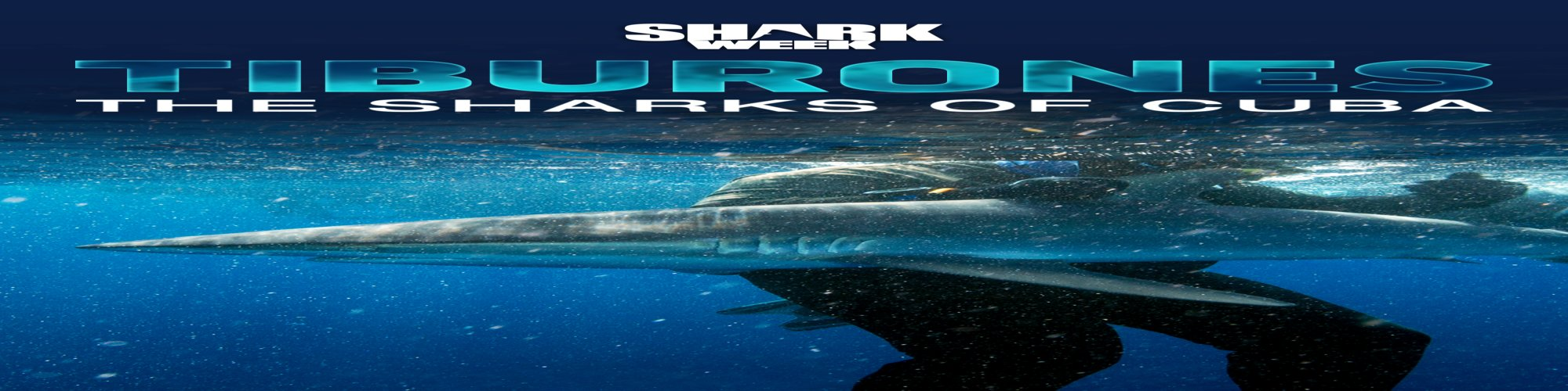 Tiburones: The Sharks of Cuba