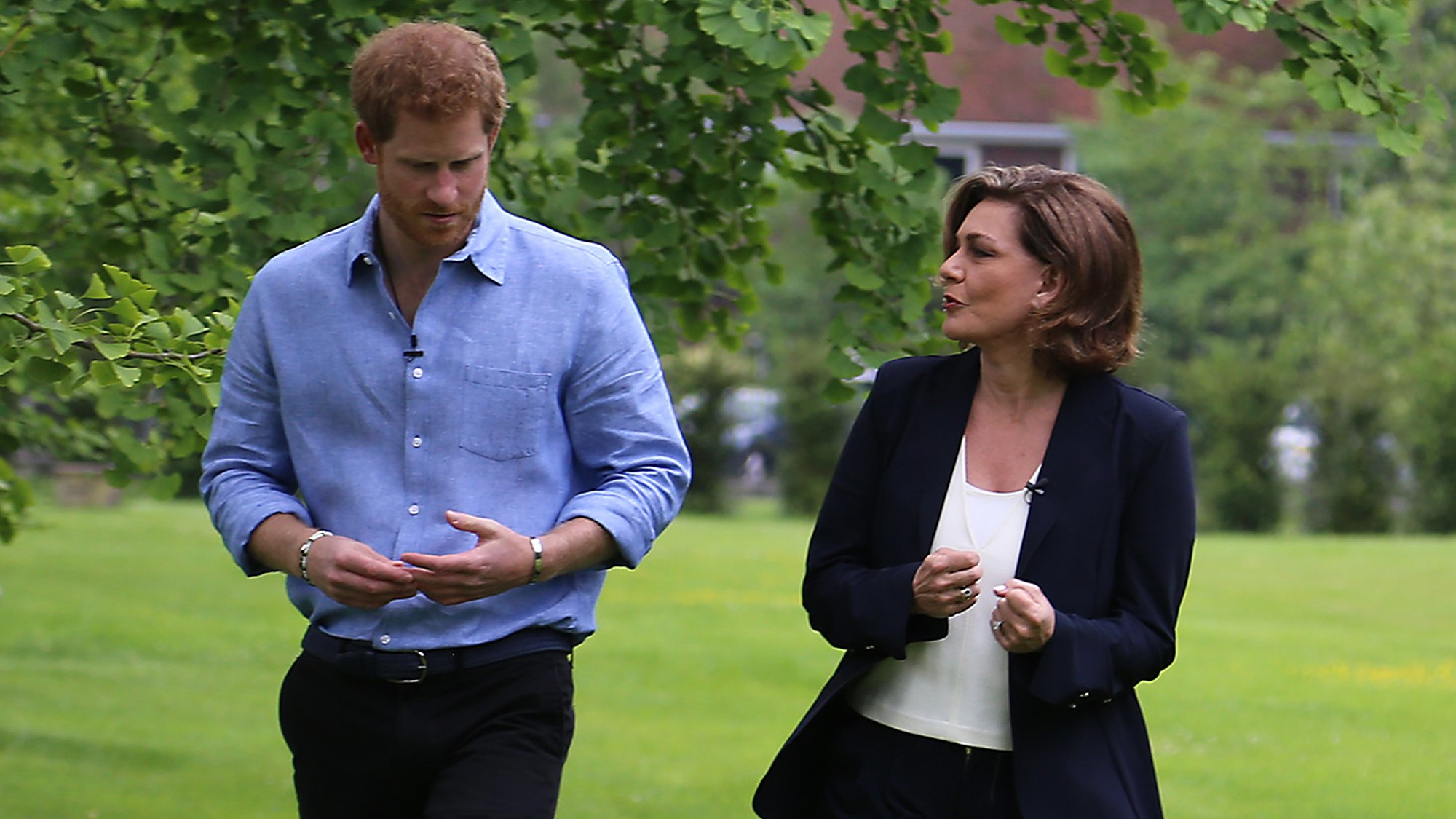 Prince Harry: Journey to Invictus