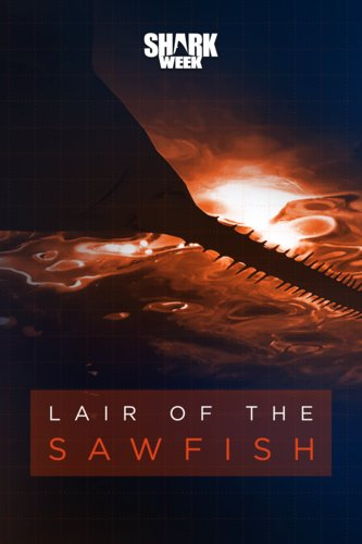Lair Of The Sawfish
