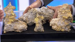 'My hands are trembling': Andrew Bell holds Royal Nickel's US$16,000 rock of gold