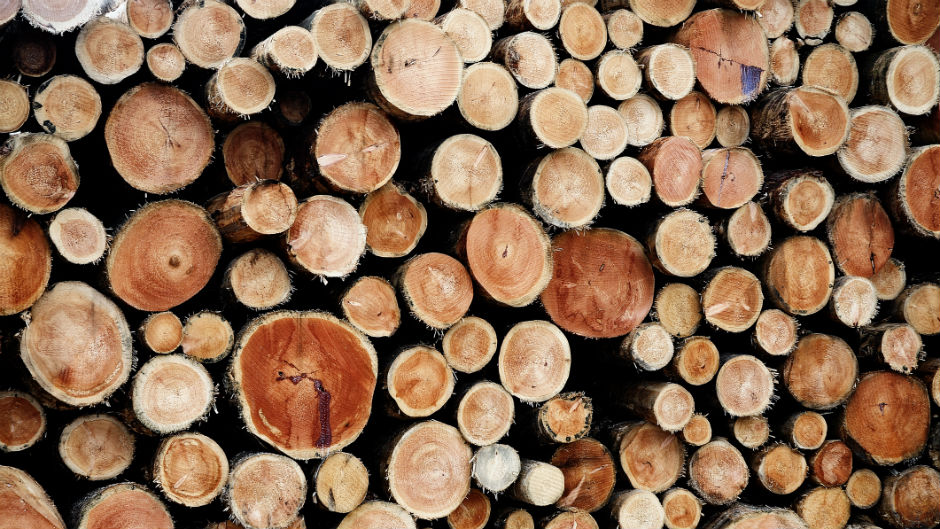 Canadian lumber price surge driving building prices in the U.S.