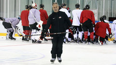 Does Desjardins have the time and talent to implement systems?