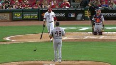 Must See: Votto shoos away bird, hits grand slam