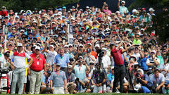 Weeks on Tigermania: 'It was a complete madhouse'