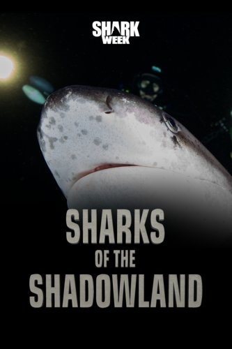 Sharks of the Shadowlands
