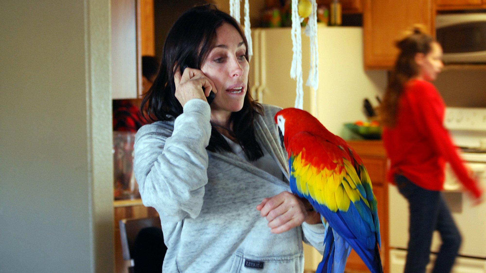 Heidi Fleiss: Prostitutes to Parrots