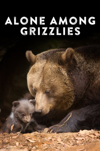 Alone Among Grizzlies