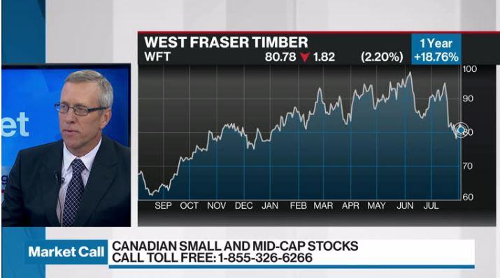 Peter Hodson discusses West Fraser Timber - Video - BNN