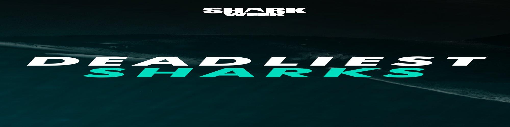 Deadliest Sharks