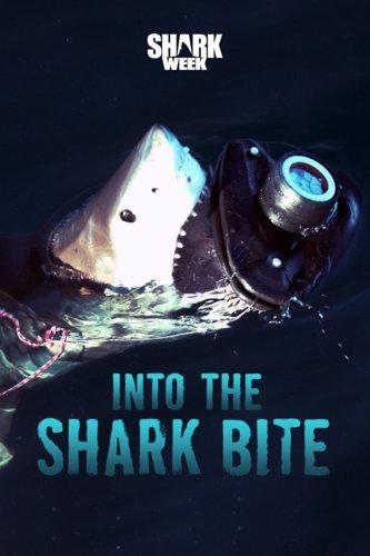 Into the Sharkbite