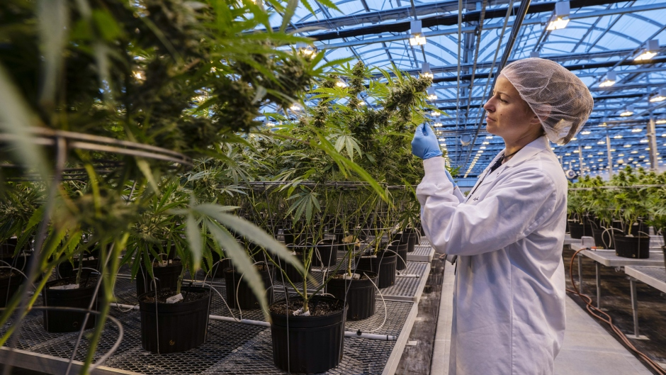 The Big Three: One year of legal cannabis; Canadian inflation data to be released; Oil sands issues in election