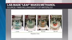 Power Shift: Lab-made 'leaf' converts carbon dioxide into fuel
