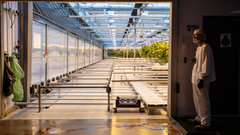 TSX reviewing CannTrust listing
