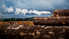 Power Shift: G4 Insights turns wood waste into renewable natural gas