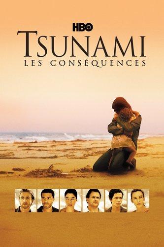 Tsunami : les conséquences