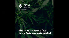 The risks investors face in the U.S. cannabis market