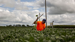 Forget it, no one's slashing U.S. farm subsidies: Kluis Commodity Advisors