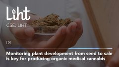 Monitoring plant development from seed to sale is key for producing organic medical cannabis