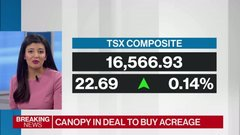 Canopy-Acreage deal pushes TSX into all-time-high territory