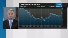 Commodities update: Eric Sprott invests US$25M in Continental Gold; Flowr shares fall on latest deal