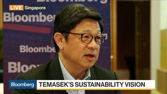Temasek's Hu Discusses Sustainable Investing