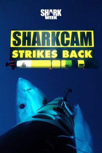 SharkCam Strikes Back