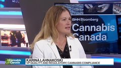 How cannabis companies can ensure compliance with evolving regulations