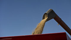 Soybean farmers hope for U.S.-China trade breakthrough