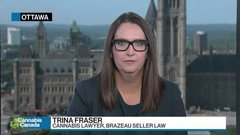 Too early to declare Ontario's cannabis retail rollout a full success: Lawyer