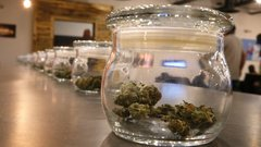 Judge suspends Ontario pot retail licensing process
