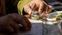 United Nations vote to reschedule cannabis in historic move